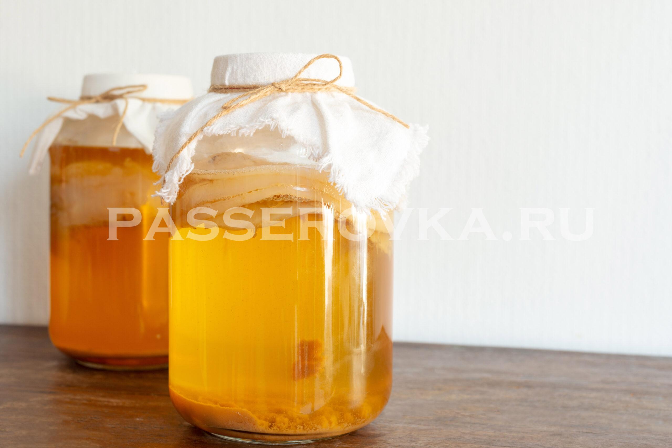 Чайный гриб как правильно заваривать и через сколько можно пить его